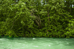 Green River Royalty Free Stock Photo