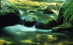 Green river. A small river at troodos mountains Stock Image