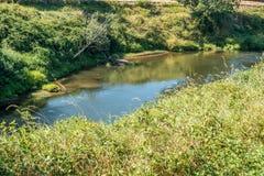 Green River Стоковая Фотография RF