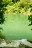 Green River Royaltyfri Foto
