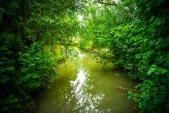Green River Arkivfoton