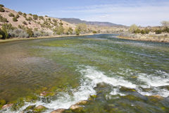 Green River at Browns Park, Utah Stock Photography