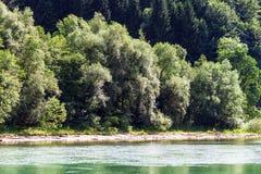 Green River in den alpinen österreichischen Bergen Stockbilder