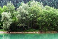 Green River in den alpinen österreichischen Bergen Stockbild