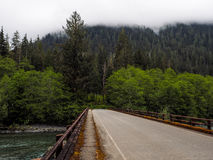Green River im Wald Lizenzfreie Stockfotos