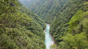 Green river in Iya valley in Japan Royalty Free Stock Photos