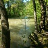 Green River стоковое фото rf