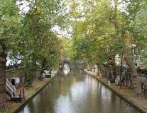 Green River och träd Arkivfoto