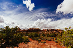 Green River Overlook, Canyonlands, National Park, Utah, USA Royalty Free Stock Photo