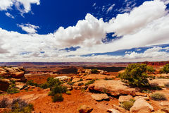 Green River Overlook, Canyonlands National Park, Utah, USA Royalty Free Stock Photos