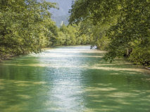 Green river with trees in summer Stock Photo
