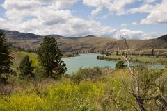 Green river valley 2. The green waters of the Lewis and Clark fork of the Yellowstone River form a broad river valley in Wyoming - horizontal orientation Royalty Free Stock Photography