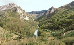 Green river valley canyon wide summer panorama Alpine mountain landscape. Mountain forest landscape. Tara River, Durmitor National. Park, Montenegro beautiful stock images