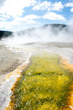 Green River. This was a small stream of water leading from one of the hot springs at Yellowstone National Park. The minerals and elements in the water died the Stock Photography