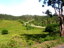 Green Road. A mountain road through the Pinar del Río province at the occident of Cuba. A beautiful palace full of pines and mountains Stock Photo