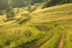 Green road. Picture taken at sunset in Slovakia royalty free stock photo