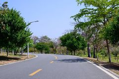 Green Road. In spring, it was taken in Songshan Lake Ecological Garden in Dongguan Stock Image