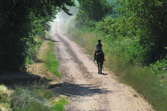 Green road to heaven. Female equestrian on a gravel road Royalty Free Stock Photos