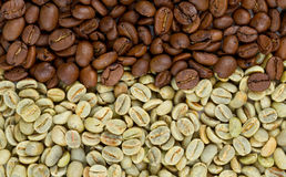Green and roasted coffee beans Stock Image