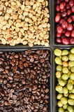 Green, roasted and fresh coffee beans Royalty Free Stock Image