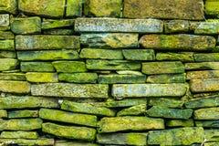 Green rock pattern Royalty Free Stock Image