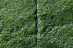 Green Rock - Vertical Crack. Closeup of a green rock with a vertical crack royalty free stock images