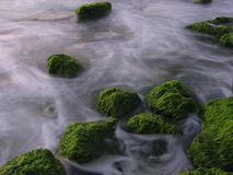 Green Rocks. In the sea Royalty Free Stock Photos