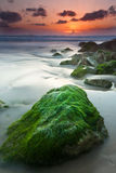 Green rocks. Beautiful sunset over one of the most great shores in Israel Royalty Free Stock Image