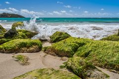 Green Rocks of the Caribbean Royalty Free Stock Image