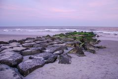 Green rocks with a pink sky in Ocean City, New Jersey. royalty free stock photo