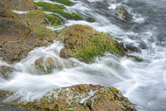 Green rocks in the surf Royalty Free Stock Photography