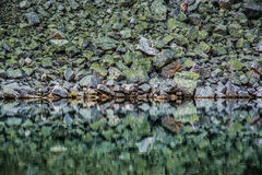 Green rocks and their reflection. On a still lake Stock Photography
