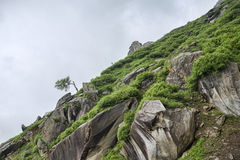 Green rocky slope in mountains. Green rocky slope in Himalayan mountains Royalty Free Stock Photo