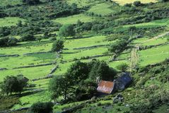 Green rolling fields in Healy Pass, Cork, Ireland Stock Images