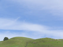 Green Rolling Hills And Big Blue Sky Stock Images