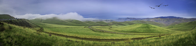 Panoramic Rolling Green Hills Stock Images