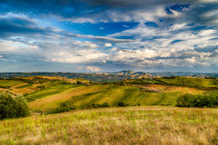 Green rolling hills Royalty Free Stock Image