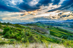 Green rolling hills Stock Photos