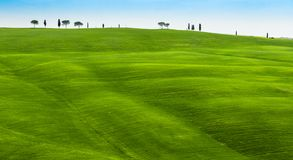 Green Rolling hills with Yellow wildflower Spring In Tuscany Italy stock photo