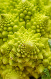 Romanesco close-up Royalty Free Stock Images