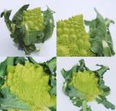 Green Romanescos Stock Photos