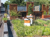 Green Roof with beehive Royalty Free Stock Images