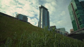 Green Roof  dolly shot 4K. UHD. A dolly shot close up of the grass on the Vancouver Convention Center's environmentally friendly, 6 acre green roof. 4K stock video footage
