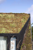 Green roof Stock Photos