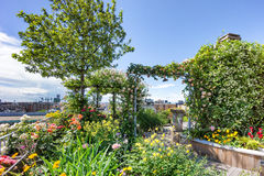Green roof garden Royalty Free Stock Images