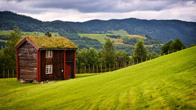 Green roof house Royalty Free Stock Images