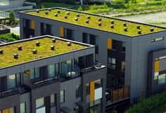 Green roof Royalty Free Stock Photos