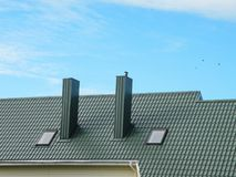 Green roof and smokestack Royalty Free Stock Images