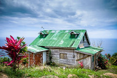 Green roof in the tropics. House near the ocean in Trinidad & Tobago Stock Photo