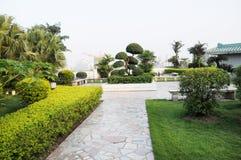 Green rooftop garden Stock Photos